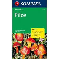1103. Pilze természetjáró könyv Naturführer