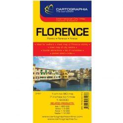 Firenze várostérkép  Cartographia