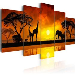 Kép - Savanna - sunset 100x50