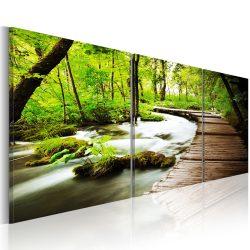 Kép - Forest Brook 150x50