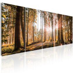 Kép - Beauty of Nature 200x80