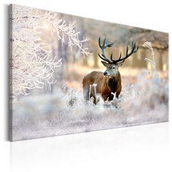 Kép - Deer in the Cold 120x80