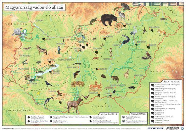 magyarország térkép domborzat Magyarország térkép gyerekeknek közigazgatás / domborzat asztali  magyarország térkép domborzat