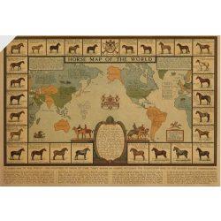 A világ híres lovai falitérkép lefóliázva, Lovas  világtérkép művészeti falitérkép 42x30 cm