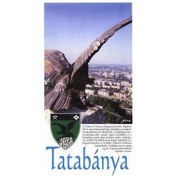 Tatabánya térkép  100 x 70 cm Stiefel 2005