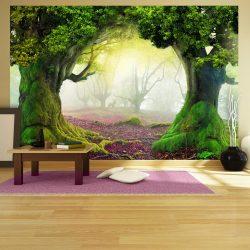 Fotótapéta - Enchanted forest