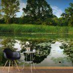 XXL Fotótapéta - The Magic Pond II