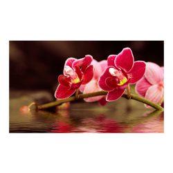Fotótapéta - Gyönyörű orchidea virágok a víz