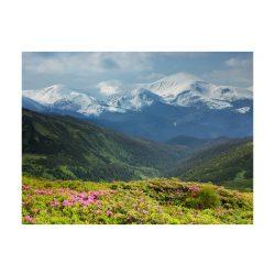Fotótapéta - Tavaszi hegyi táj