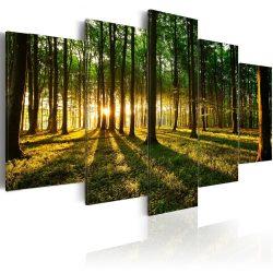 Kép - Adventure in the woods 100x50