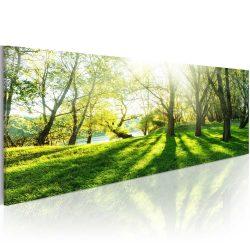 Kép - Rays of Sunshine 120x40