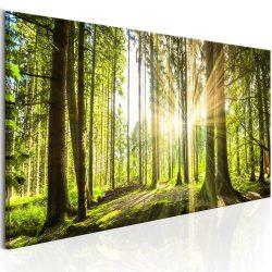 Kép - Daylight 150x50