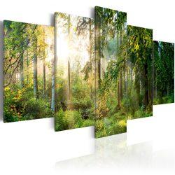 Kép - Green Sanctuary