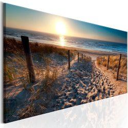 Kép - Sunset Path