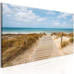Kép - Windy Beach