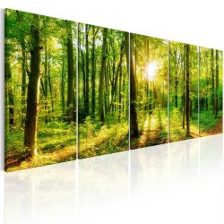 Kép - Magic Forest 225x90