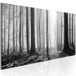 Kép - Black and White Forest 150x50