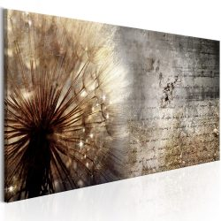 Kép - Dandelion on Concrete