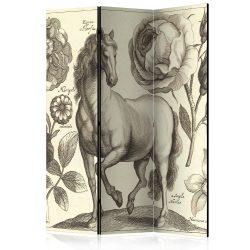 Paraván - Horse [Room Dividers]