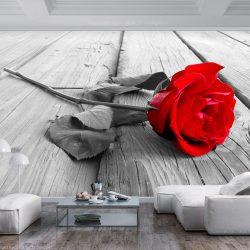 Fotótapéta - Abandoned Rose