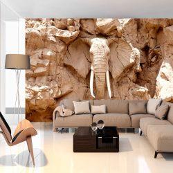 Fotótapéta - Stone Elephant (South Africa)