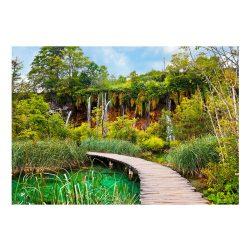 Fotótapéta - Green oasis
