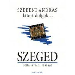 Szeged útikönyv, album Alexandra Kiadó